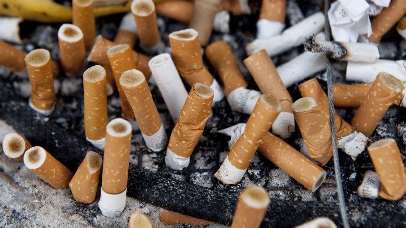 Rauchverbot Niedersachsen
