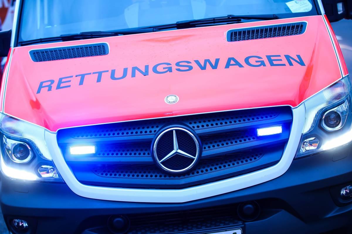 Kletterausrüstung Hamburg : Herzinfarkt? hamburger klettert auf baum und stirbt schleswig