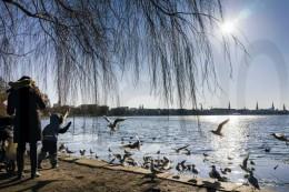 Wetter: Erst Schnee, dann Sonnenbrand – Frühlingsbeginn in Hamburg