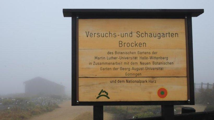 Später Saisonstart: 1250 Besucher im Brockengarten