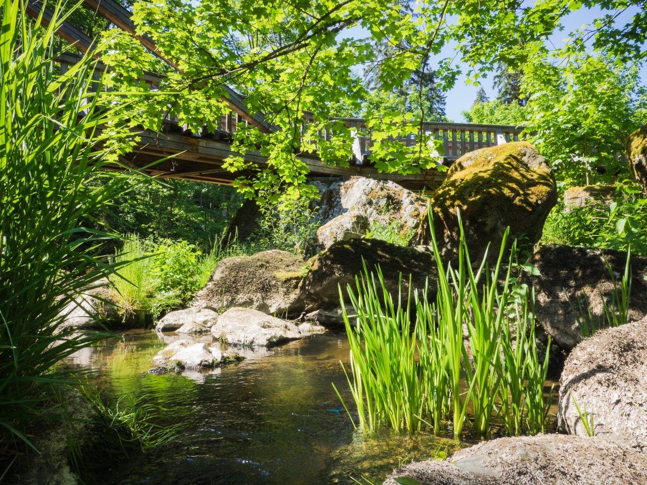 Idylle pur im Naturpark Frankenwald.