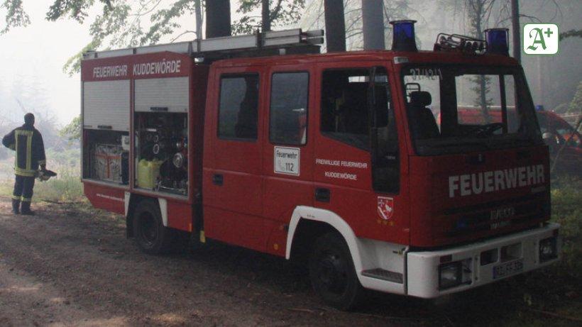 Partnersuche buckeburg