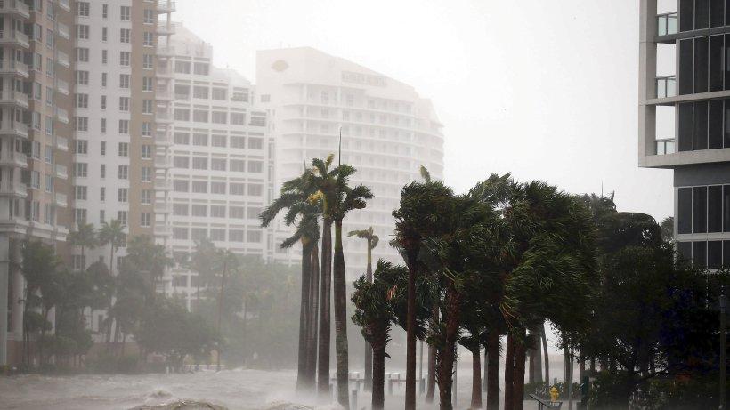 Hurrikan: Das Ignorieren plusieurs Klimawandels hat enorme Folgen