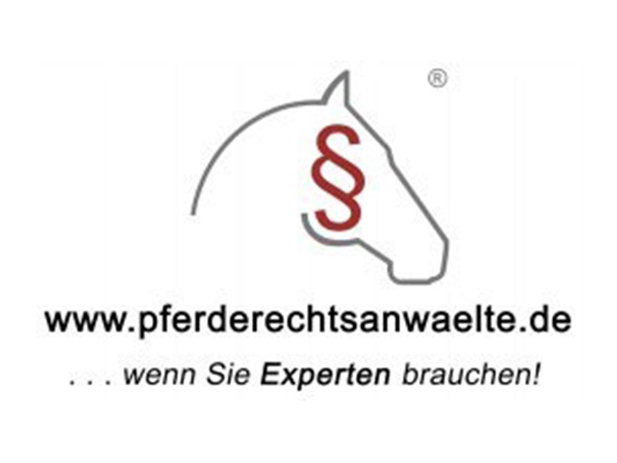 Howest und Partner in Hamburg-Blankenese ist eine interdisziplinäre Kanzlei von Steuerberatern und Rechtsanwälten. Die Rechtsanwältin Kristin Sophia Howest erläutert gegenüber dem Hamburger Abendblatt die verschiedenen Kompetenzbereiche der Kanzlei - vom Gesellschaftsrecht über das Pferdesport- und Arzthaftungsrecht bei Mensch und Tier bis zur ganzheitlichen (Steuer-)beratung ihrer Mandanten.