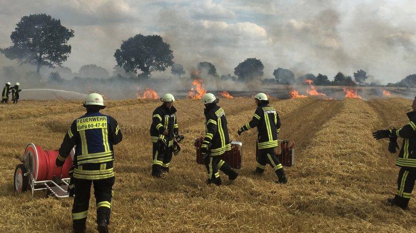 Stoppelfeld in Ahrensfelde geht in Flammen auf - Stormarn - Hamburger Abendblatt