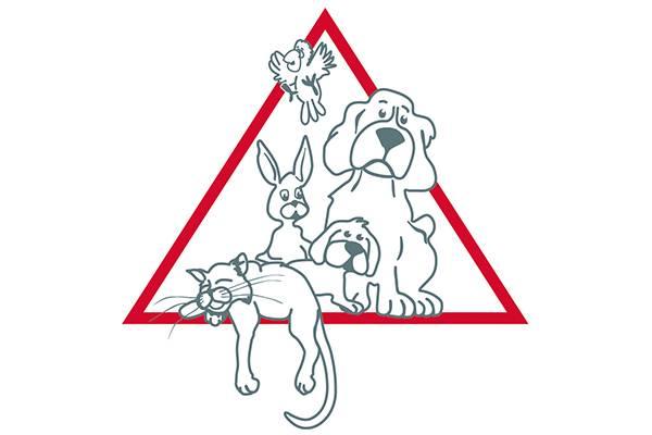 In der Tierklinik Lüneburg kommen die modernsten Bildgebungs- und Operationsverfahren zum Einsatz: zum Wohl der Tiere