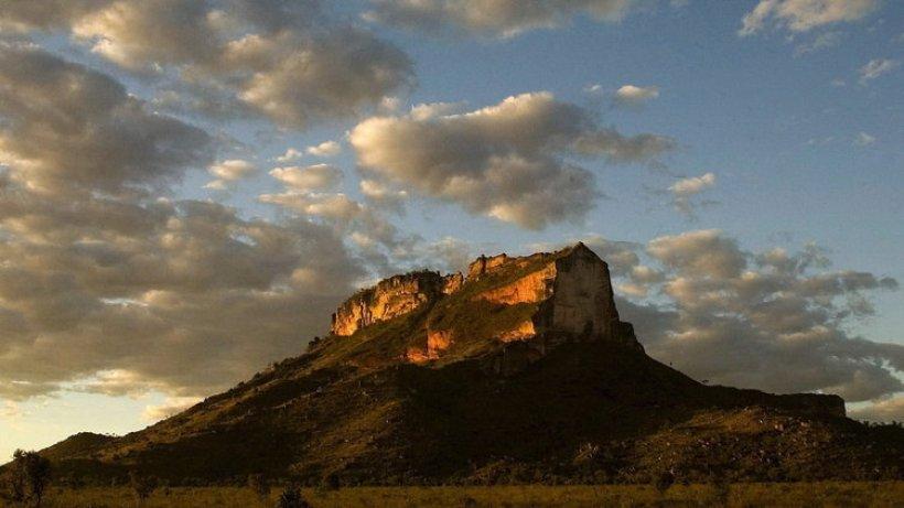alarm in brasilien - savanne cerrado bedroht