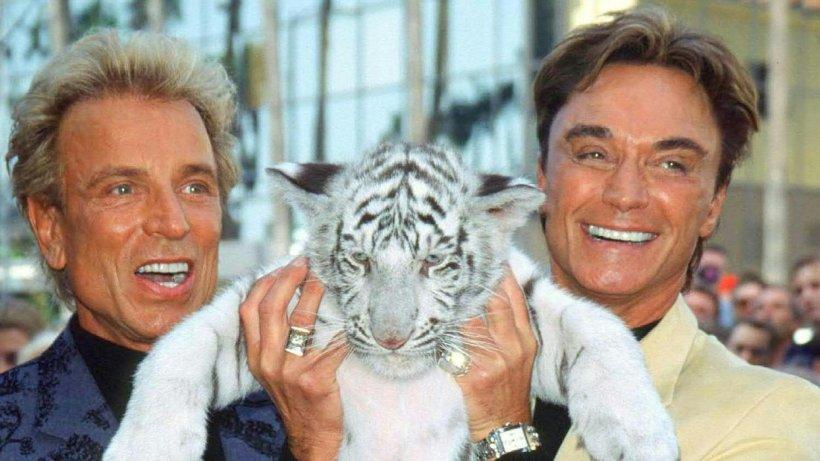 Siegfried Und Roy Casino