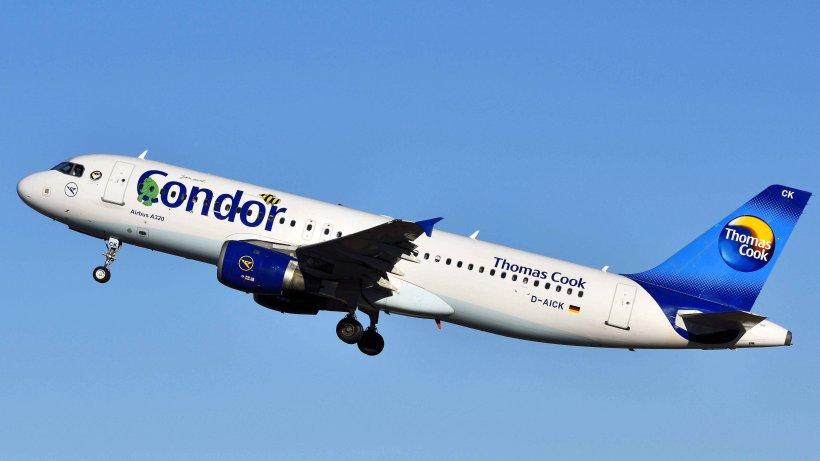 Thomas Prepare: Neue Mallorca-Fluglinie fliegt auch nach Hamburg
