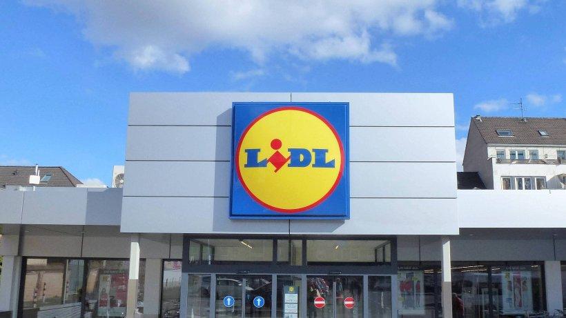 Lidl Norderstedt Aktuelle Angebote Siege Logitech G29