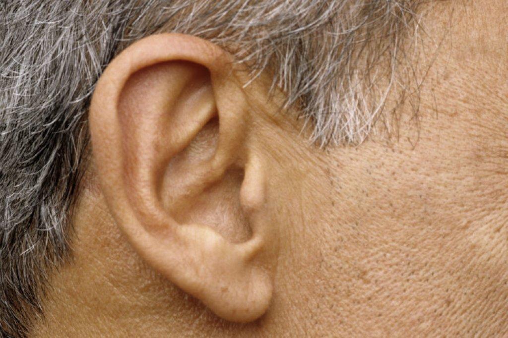 Warum wachsen bei Männern im Alter die Ohren? - Wissen - Hamburger ...