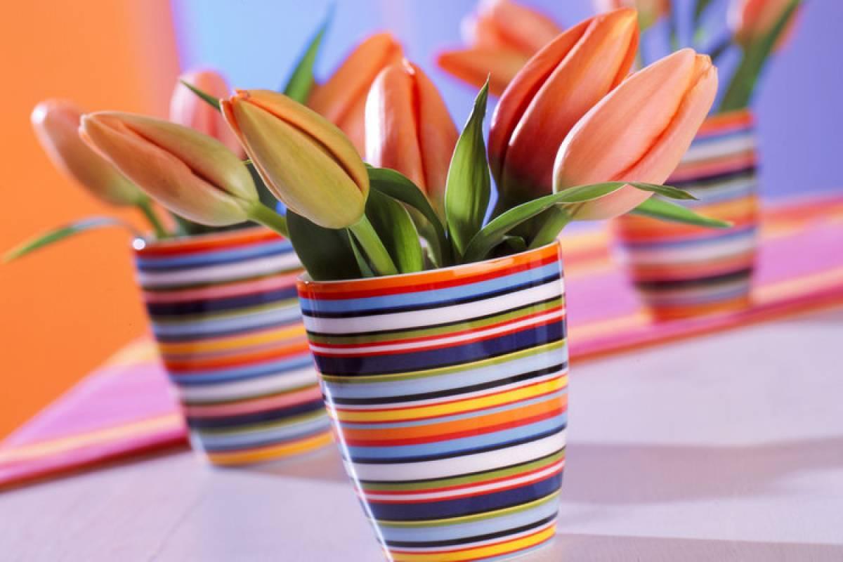 Warum Wachsen Tulpen In Der Vase Weiter Wissen Hamburger Abendblatt